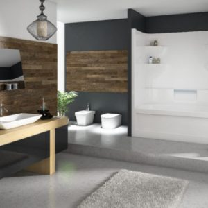 Two Piece Tub & Shower